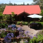 Accommodation Deal - STAY AT JACARANDA COTTAGES - GORGEOUS, PEACEFUL SURROUNDS