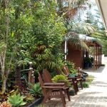 Accommodation Deal - PINE VALLEY APARTMENTS - CONVENIENT CENTRAL LOCATION IN SUB-TROPICAL GARDENS