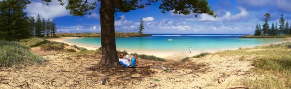 Beautiful Norfolk island