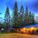 Accommodation Deal - TRADE WINDS COUNTRY COTTAGES - LOCATED IN A TRANQUIL RURAL SETTING